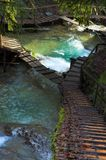 Cachoeira e Y-srairs fotografia de stock royalty free