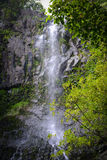 Cachoeira em Maui Havaí Imagens de Stock