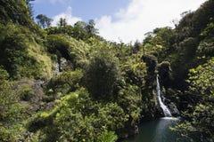 Cachoeira em Maui, Havaí. Imagens de Stock Royalty Free