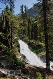 Cachoeira em montanhas de Altai fotos de stock royalty free