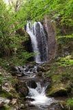 Cachoeira em montanhas de Tesnei, Romênia Fotografia de Stock Royalty Free