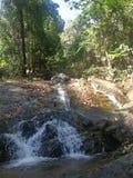 Cachoeira em park2 imagem de stock
