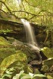 A cachoeira em Phu Kradueng de Tailândia Fotos de Stock Royalty Free