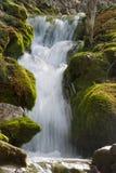 Cachoeira em Plitvicka Jezera - Plitvice foto de stock