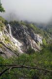 Cachoeira em Rosenlaui Foto de Stock Royalty Free