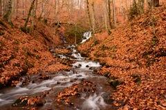 Cachoeira em sete lagos Fotos de Stock Royalty Free