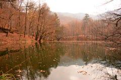Cachoeira em sete lagos Foto de Stock