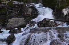 Cachoeira em tatras altos Imagens de Stock Royalty Free