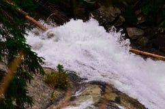 Cachoeira em tatras altos Foto de Stock Royalty Free