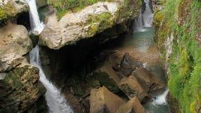 Cachoeira em um c?rrego tormentoso da floresta tropical ?mida de um rio da montanha Cachoeira bonita na ?gua pura da floresta video estoque