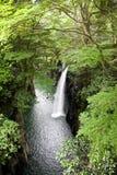 Cachoeira em um desfiladeiro fotografia de stock royalty free
