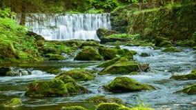 Cachoeira em um rio rápido montanhoso com as pedras cobertos de vegetação com o musgo imagens de stock