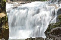 Cachoeira em uma floresta Fotos de Stock