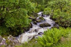 Cachoeira em Watendlath Beck, distrito inglês do lago, Cumbria, Inglaterra fotografia de stock royalty free