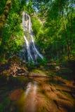 Cachoeira entre as árvores Fotografia de Stock