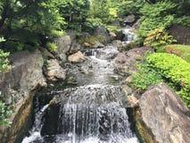 Cachoeira entre a natureza Foto de Stock Royalty Free