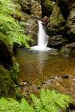 Cachoeira escondida Fotos de Stock