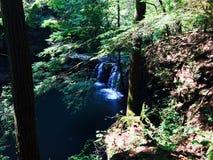 Cachoeira escondida Fotografia de Stock Royalty Free