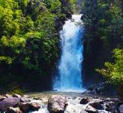 Cachoeira escondida segredo escondida afastado em Maui olá! fotografia de stock royalty free