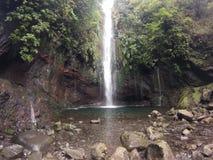 Cachoeira - 25 Fontes fotos de stock