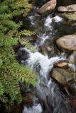 A cachoeira, fren e a ?gua de fluxo. Imagem de Stock Royalty Free