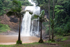 Cachoeira Grande waterfall, Lagoinha / SP Stock Photography