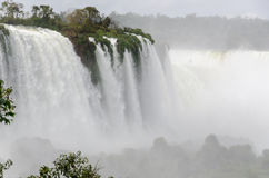 Cachoeira Iguacu Imagens de Stock
