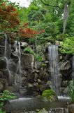 Cachoeira imaculada Foto de Stock Royalty Free