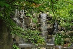 Cachoeira imaculada Imagem de Stock Royalty Free