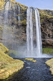 Cachoeira Islândia de Seljalandsfoss Fotos de Stock Royalty Free