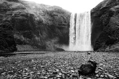Cachoeira Islândia de Skogafoss Foto de Stock Royalty Free