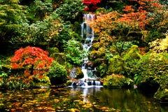 Cachoeira, jardim japonês Fotografia de Stock Royalty Free