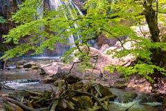 Cachoeira Jur-Jur Foto de Stock Royalty Free