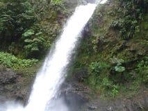 Cachoeira La Paz fotos de stock royalty free