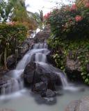 Cachoeira longa da exposição Fotos de Stock