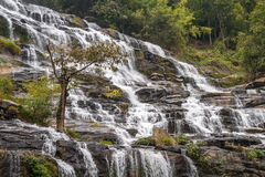 Cachoeira Mae Ya na floresta de Tailândia Fotos de Stock