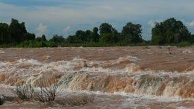 A cachoeira a maior do sudeste de Asia' é ficada situada em Laos do sul perto da beira cambojana video estoque