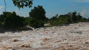 A cachoeira a maior do sudeste de Asia's é ficada situada em Laos do sul perto da beira cambojana video estoque