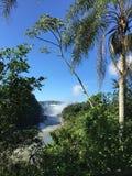 A cachoeira a maior no mundo - lado de Foz de Iguaçu Argentina fotografia de stock royalty free
