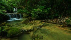 Cachoeira maravilhosa em Tailândia vídeos de arquivo