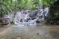 Cachoeira mexicana na floresta selvagem foto de stock
