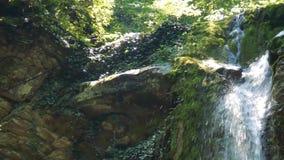 Cachoeira na água pura da floresta entre rochas filme