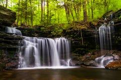 Cachoeira na angra da cozinha em Ricketts Glen State Park Fotografia de Stock