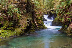 Cachoeira na angra de Willaby foto de stock
