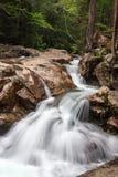 Cachoeira na bacia foto de stock royalty free