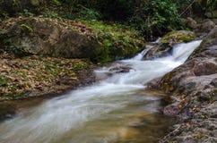 Cachoeira na estação do outono, Tailândia de Chaeson fotografia de stock