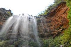 Cachoeira na floresta úmida em Wentworth Falls, Novo Gales do Sul, Austrália imagens de stock royalty free