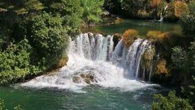 Cachoeira na floresta filme