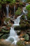 Cachoeira na floresta Fotografia de Stock Royalty Free