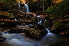 Cachoeira na floresta fotos de stock royalty free